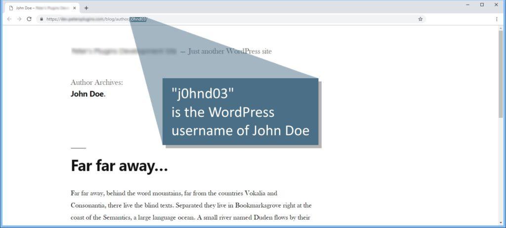 smart User Slug Hider - Free WordPress Plugin - Screenshot
